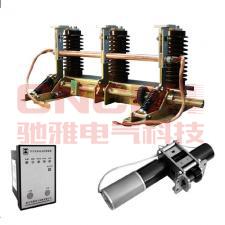 JN15-24/D31.5电动接地开关